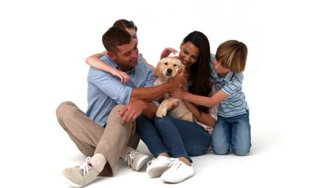 Happy family with their puppy on white background Footage