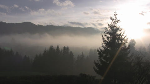 Misty Sunrise Stock Video Footage