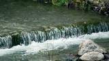 Spring water Footage