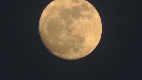 Full Moon Timelapse 03 Stock Video Footage