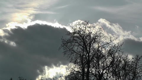 Springtime Trees and Clouds Sunset Timelapse 02 Stock Video Footage