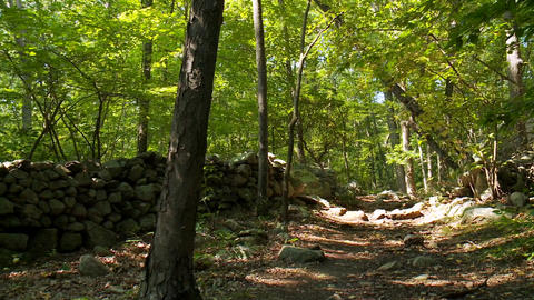 Nature Conservancy Trail (6 of 9) Footage