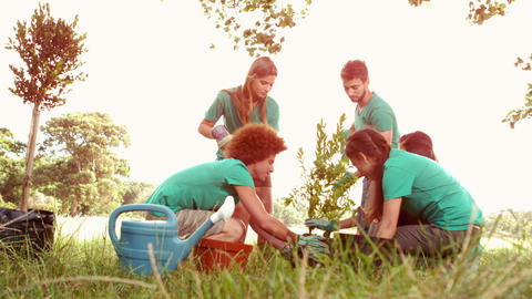 In slow motion happy friends gardening for the community Footage
