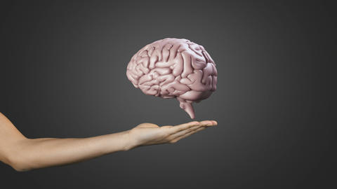 Hand presenting a spinning brain, Stock Animation