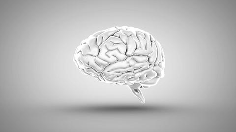 Brain spinning on white background, Stock Animation