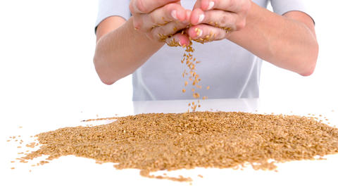 Woman pouring grain on white background Footage