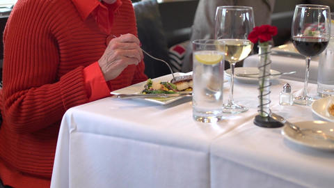 Dining Luxuriously with friends (5 of 6) Footage
