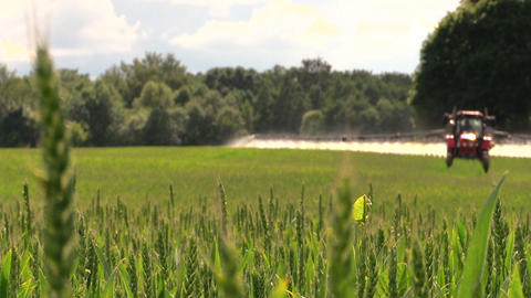 tractor spray green crop field on farm sunny day. Focus change Footage