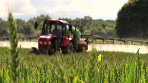 farmer spray agricultural tractor fertilizer on cereal field Footage