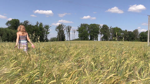 woman walk through field of ripe rye in summer time Footage