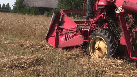 Retro combine harvester trash ripe grain field in summer Footage