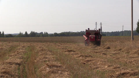 farmer with harvester in barley field. Activities in rural Footage