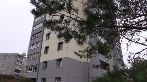renovated high flat apartment house windows and tree branch Footage