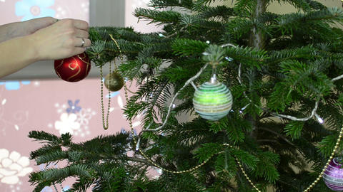 Girl hands hang decorative toy ball on Christmas tree branch Footage
