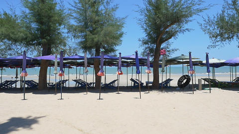 A row of beach chairs and umbrella at the beach, Thailand : Tilt up shot Footage