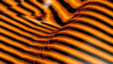 Tiger Texture Background stock footage