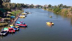 TEL AVIV OCTOBER 25 Yarkon River On Suterday Morning With Paddling Boats stock footage