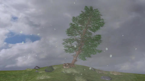 Fallen and Up Of Trees Extrem Thunder Strom Winds Motion Visual Effect Footage