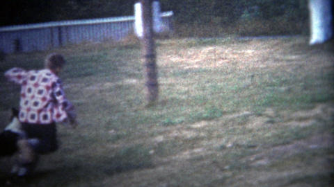 ALBANY, NY. USA - 1953: Lassie looking like dog chasing children around the yard Footage