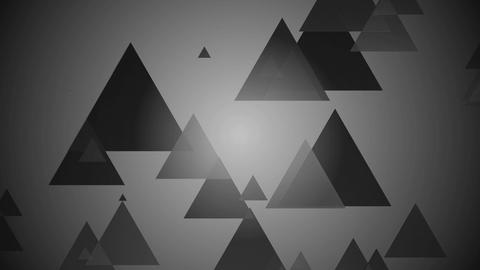 black white triangles Animation