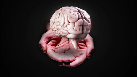 Hand presenting a spinning brain Animation