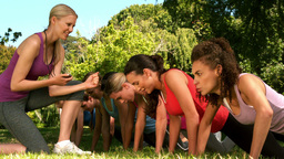 Fitness group doing push ups in park Footage