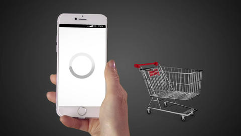 Woman shopping online on her phone Animation