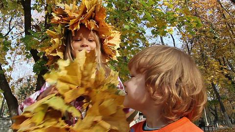 Autumn wreath Stock Video Footage