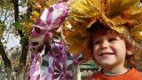 Autumn wreath Footage