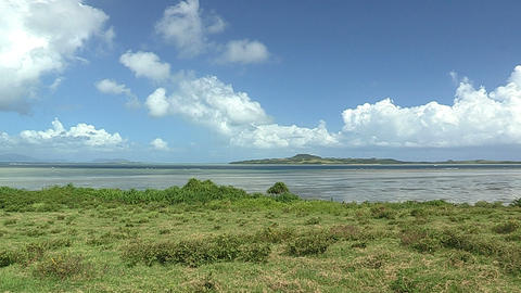 Summer landscape in Iriomote island,Okinawa,Japan_4 Stock Video Footage