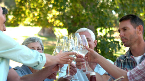 Happy Seniors Toasting With Their Family stock footage