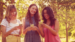 Happy female friends using their smartphones and laughing Footage