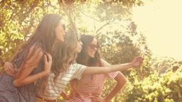 Group of pretty friends taking a selfie Footage