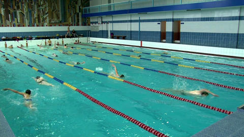 Swimmers doing laps in swimming pool Footage