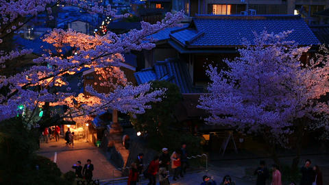 Evening. People walk in the cherry blossom season in Kyoto, Kiyomizu Temple ライブ動画