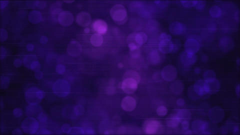 Particle Background Animation - Loop Violet Animation