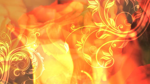 Bright Flowers Background stock footage