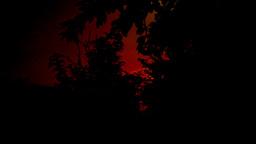 Sundown In The Garden, Pan Footage