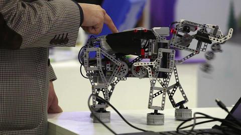 Robot Toy Elephant Handmade stock footage