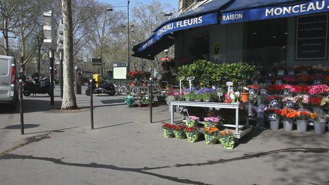 Flowershop Stock Video Footage