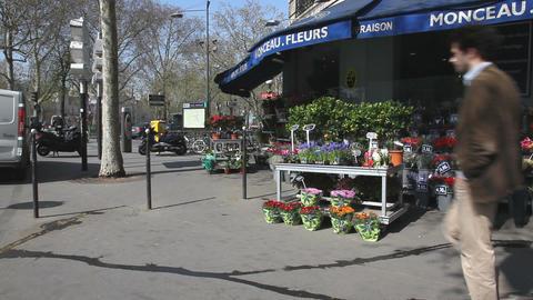 Flowershop Stock Video Footage