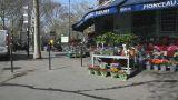 Flowershop Footage
