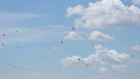 Kite 02 Stock Video Footage