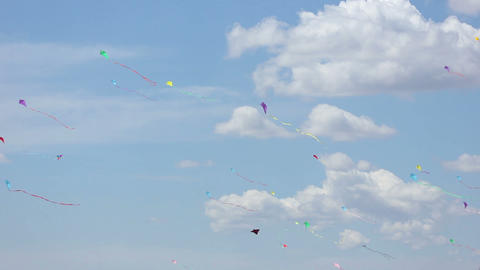 Kite 02 Stock Video Footage