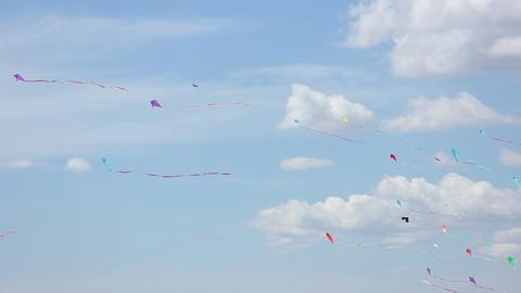 Kite 04 Stock Video Footage