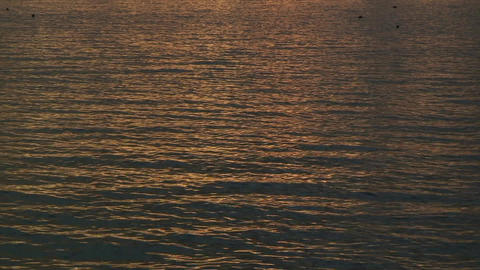 SurfaceInTheEvening01 Stock Video Footage