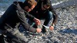 Horn fish season has started Footage