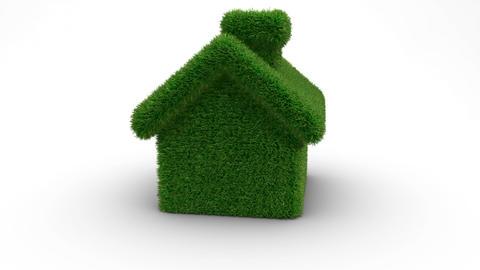 house grass loop CG動画素材
