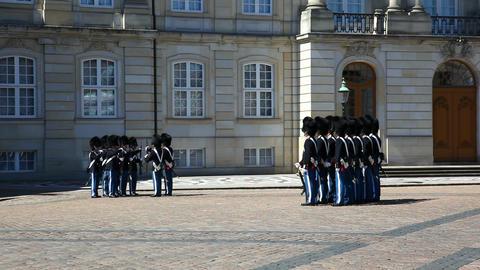 Royal Life guard in Copenhagen Stock Video Footage