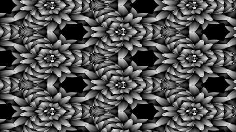 FlowerMotif13 Stock Video Footage